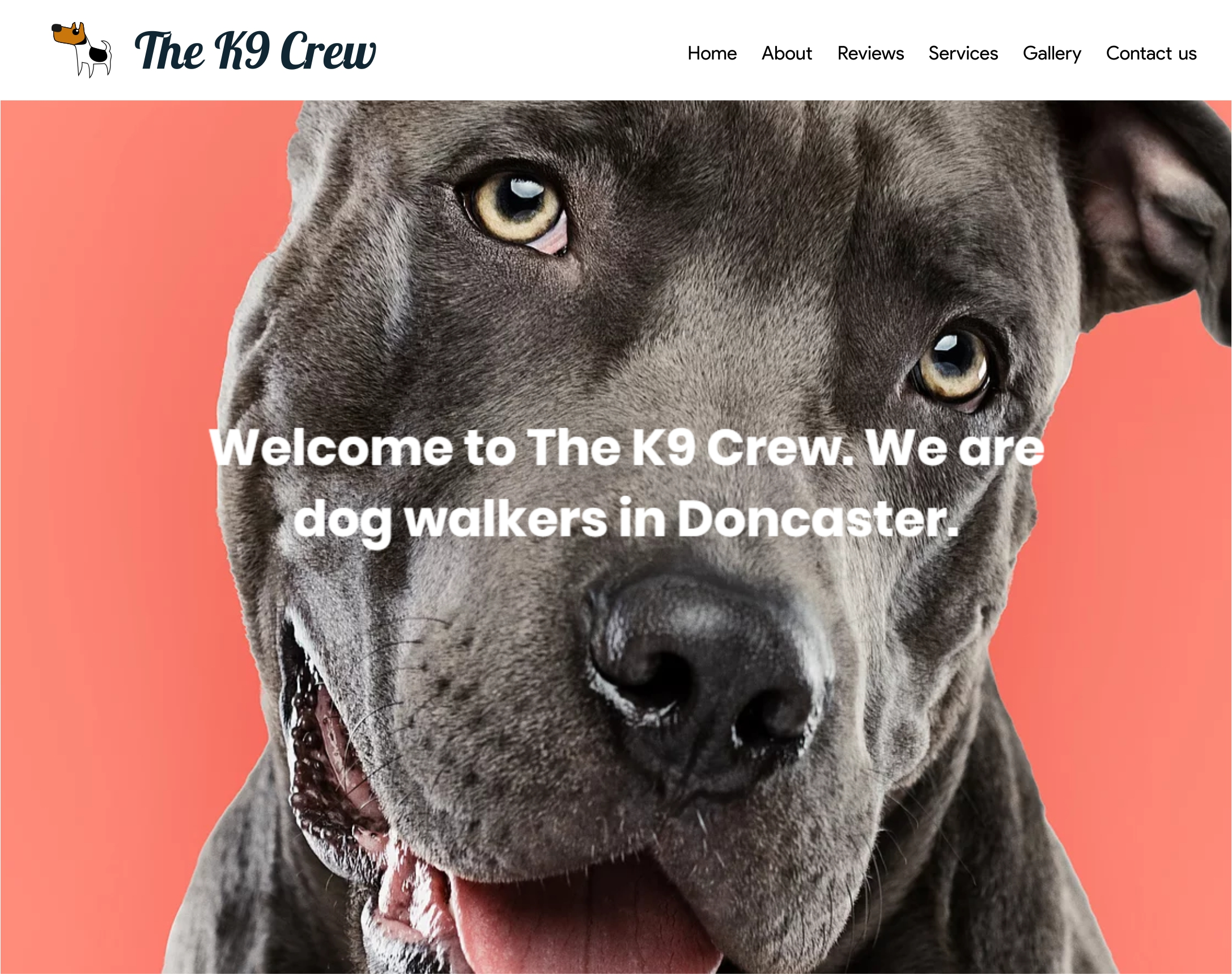 The K9 Crew The K9 Crew. Fully qualified and insured dog walke...