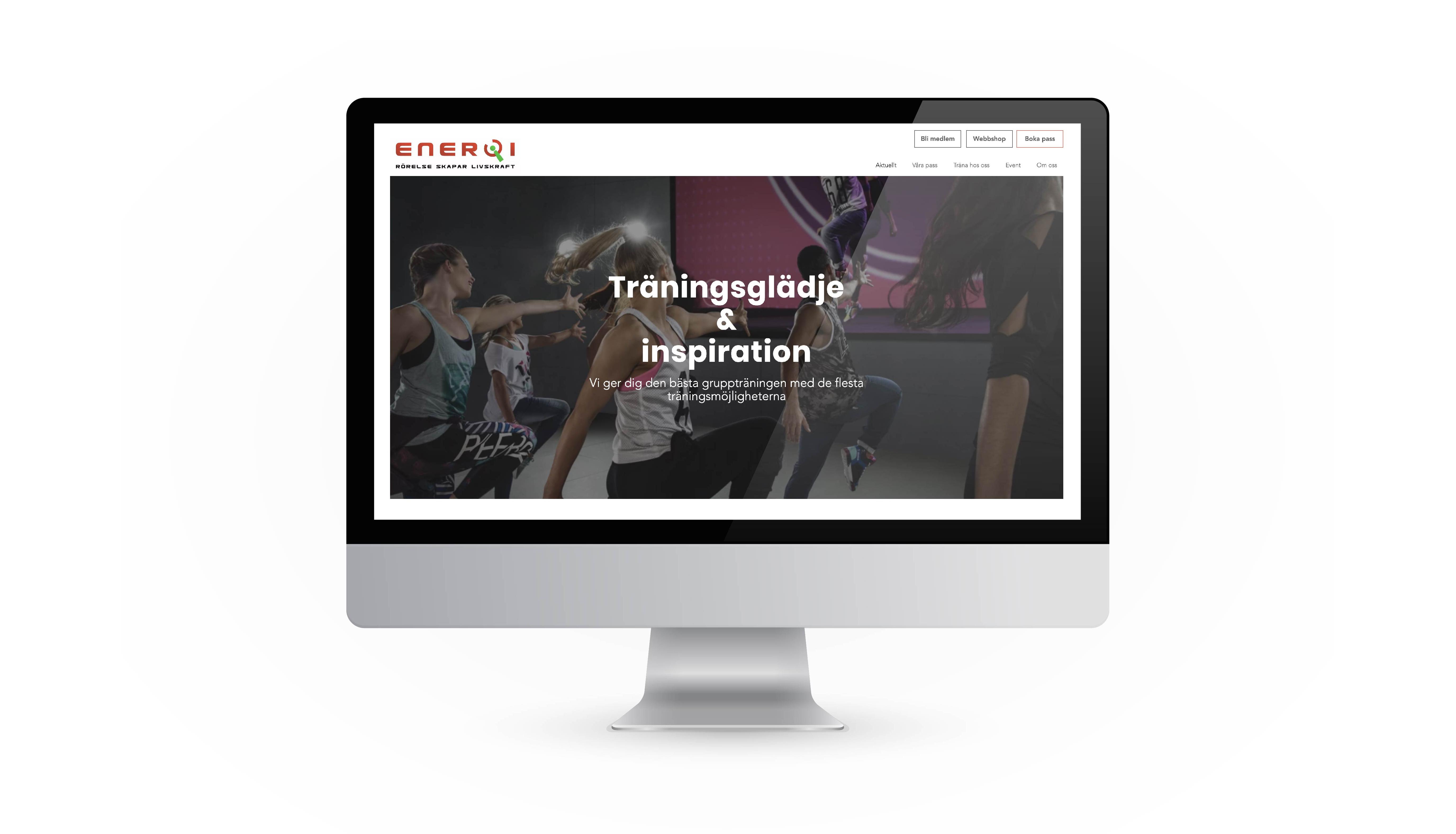EnerQi Website design