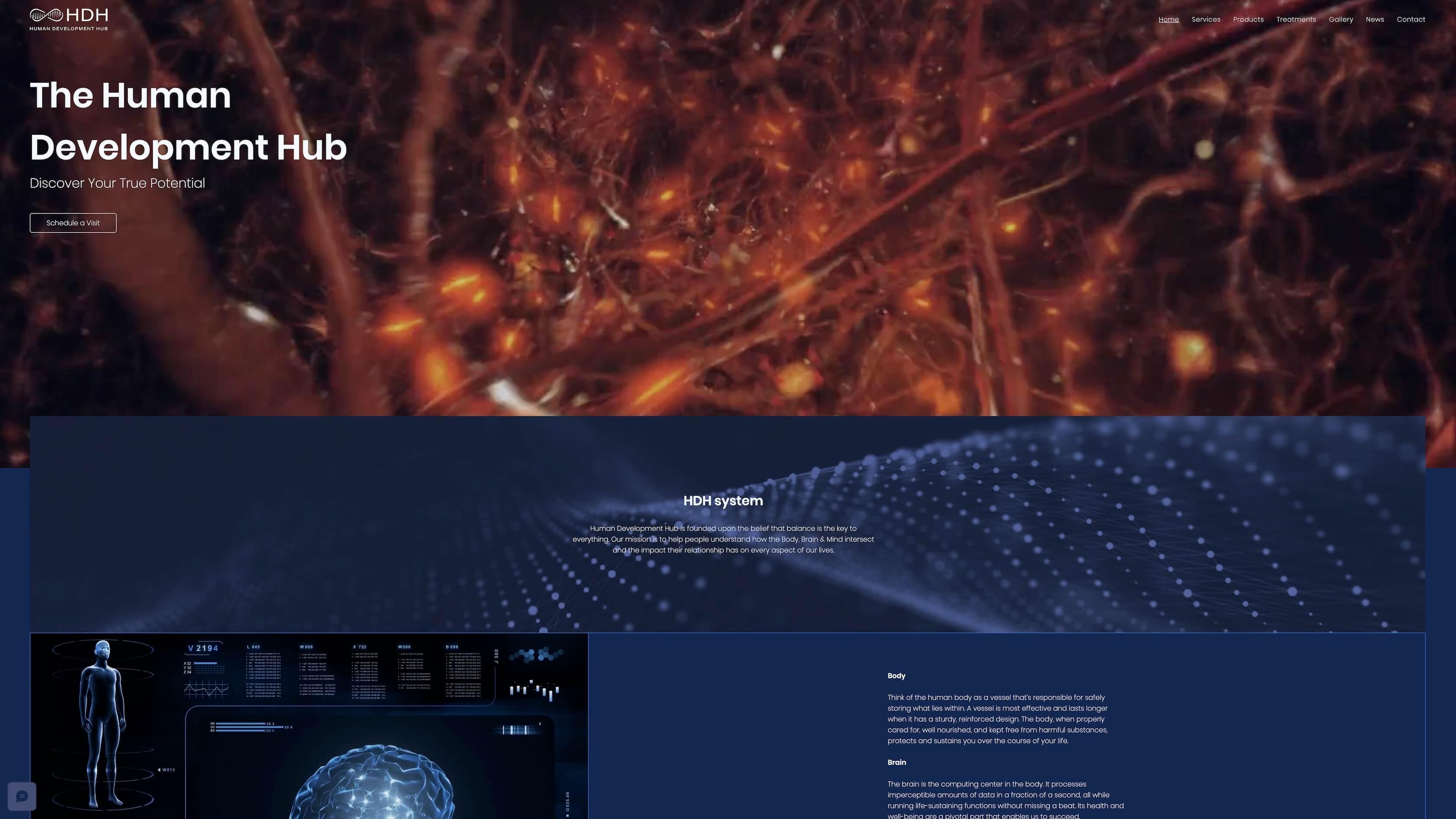 HUMAN DEVELOPMENT HUB - SINGAPORE DNA research facility site, Blog, IG, pro logo, co...