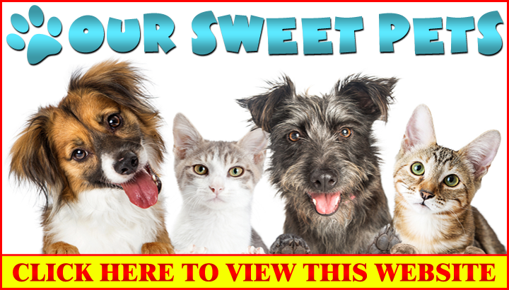 Our Sweet Pets ***BASIC Wix Website Design without a Slide Show**...