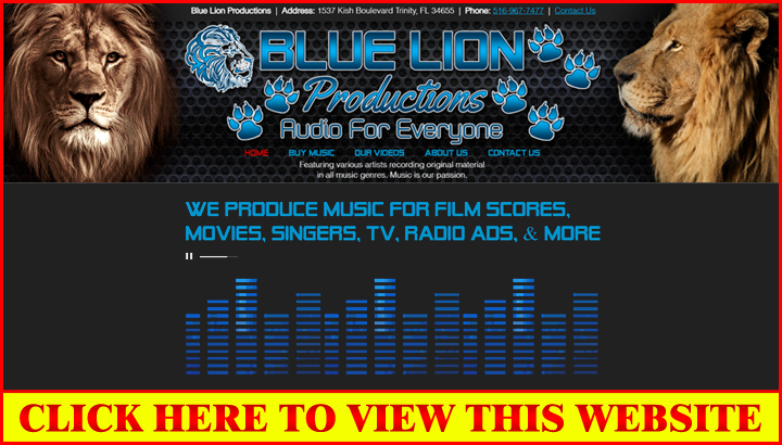 Blue Lion Productions ***BASIC Wix Website Design without a Slide Show**...